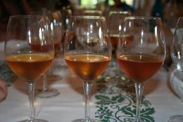 orange wine, il colore del bianco macerato