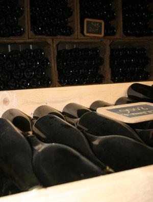 la cantina di ca de noci vino biologico reggio emilia