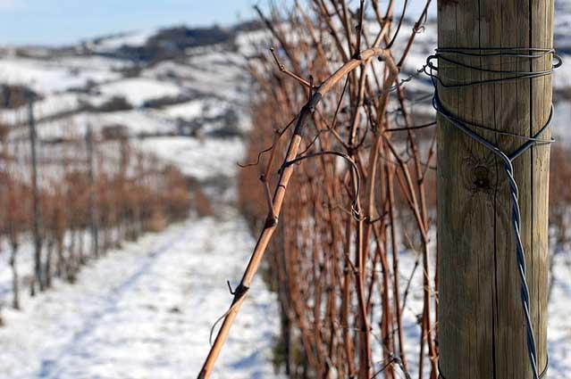 la marca di san michele in inverno