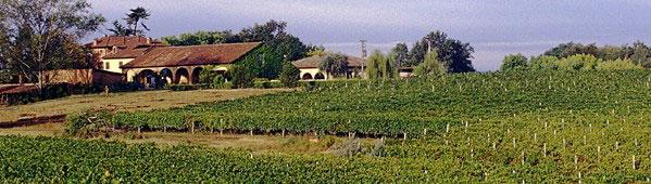 Tenuta Grillo, vista dell'azienda vitivinicola nel Monferrato