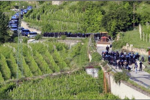 le vigne di Avanà sotto assedio