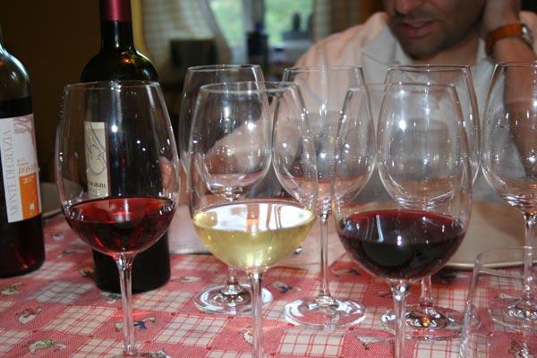 i vini di Monte di Grazia nei bicchieri