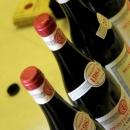 i-vini-di-pepe-agazzano-2012