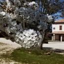 valle-del-sole_photo-4