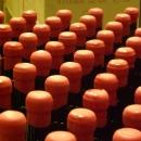 montedallora-bottiglie