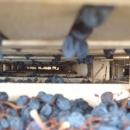 montedallora-cassa-appassimento-uva