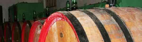 Bressan la magia delle vecchie viti sui ciotoli dell'Isonzo