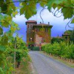 La Stoppa, vini che incarnano il territorio