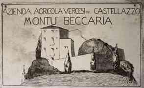 Vercesi del Castellazzo, l'elemento uomo nella composizione di un terroir