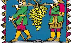 14 maggio a Venezia Il viaggio delle Malvasie, vino dei re dal Carso alla Sicilia