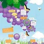 Grafico Vinnatur 2012 per residui pesticidi nei vini