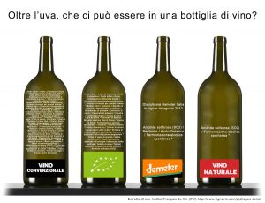 gli ingredienti del vino
