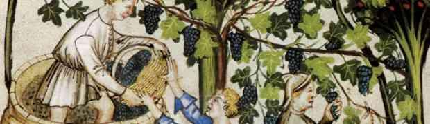 Decimo compleanno per i vini naturali, in alto i calici!