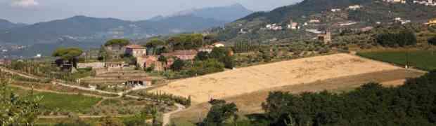 Tenuta di Valgiano, un terroir in bottiglia