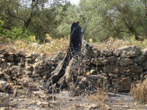 Incendio all'Orto dei Tu'rat in Salento