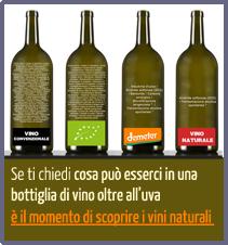 depliant vini naturali di sorgentedelvino.it