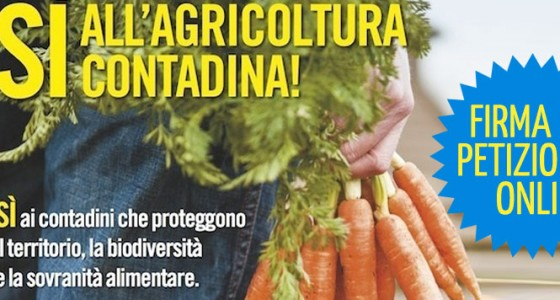 Header campagna agricoltura contadina