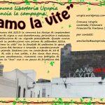 amo-la-vite_sfondo_giallo_bassa_risoluzione-2