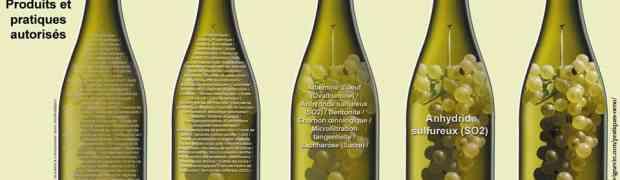 E' nata la Carta d'Intenti del Vino Naturale Italiano