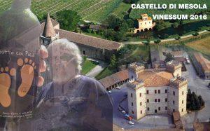 Sorgentedelvino al Castello di Mesola